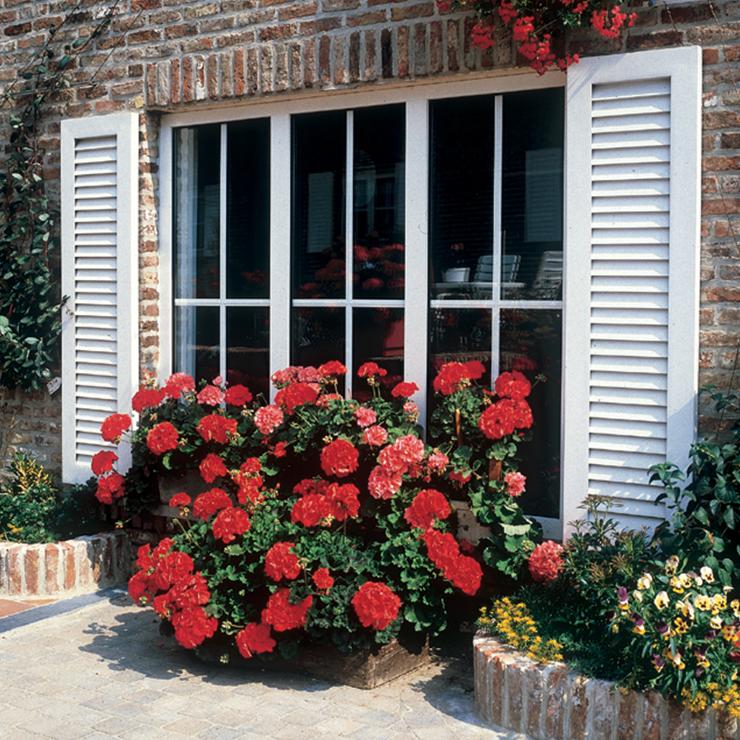 External decorative rungs